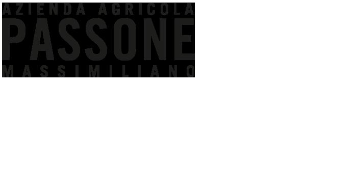 Logo Passone
